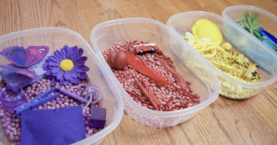 colorful sensory bins in a row